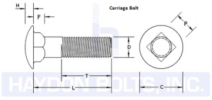 Carriage Bolt - Haydon Bolts Inc